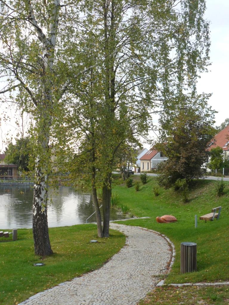 Foto valdeckého rybníka a okolí č.6.